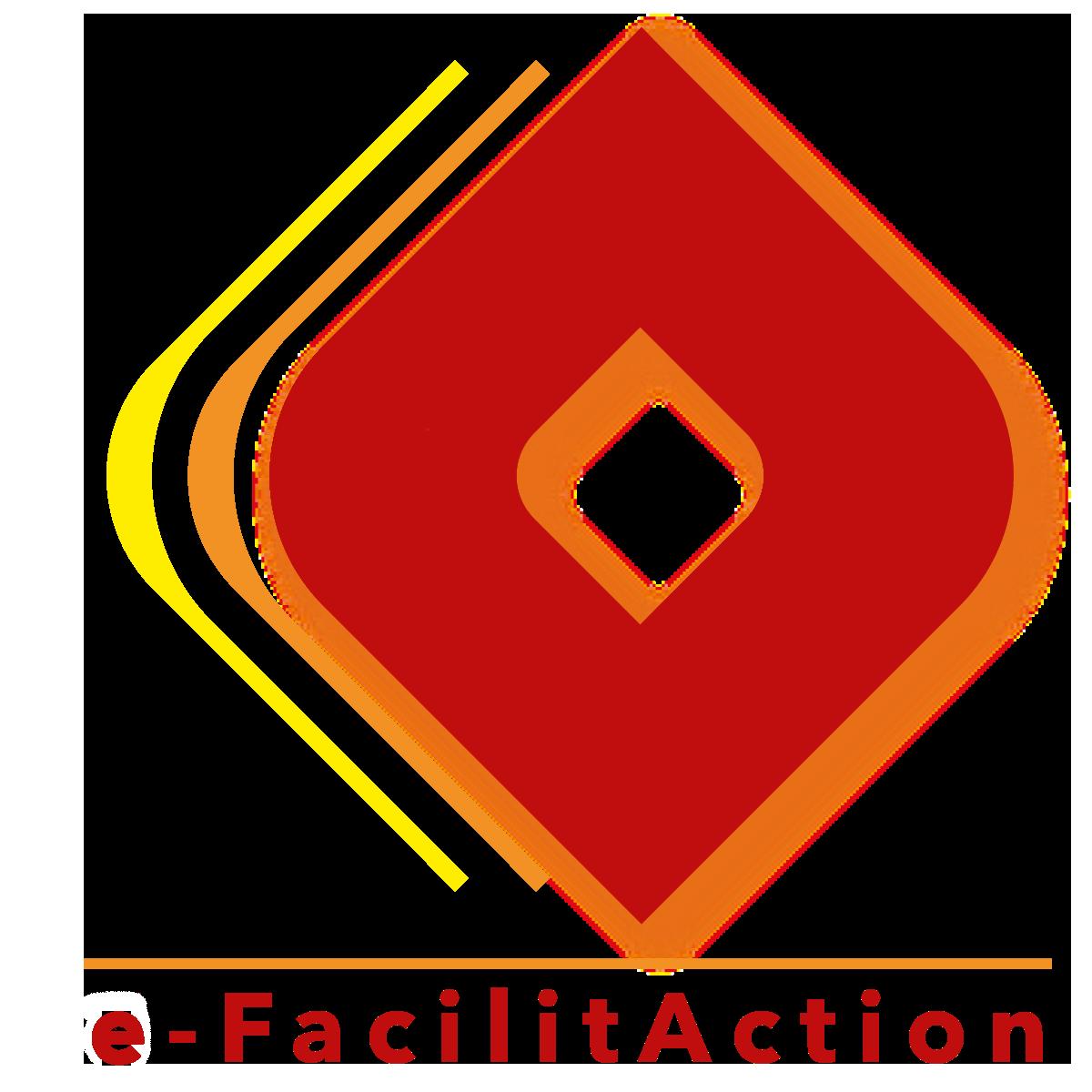 e-facilitaction